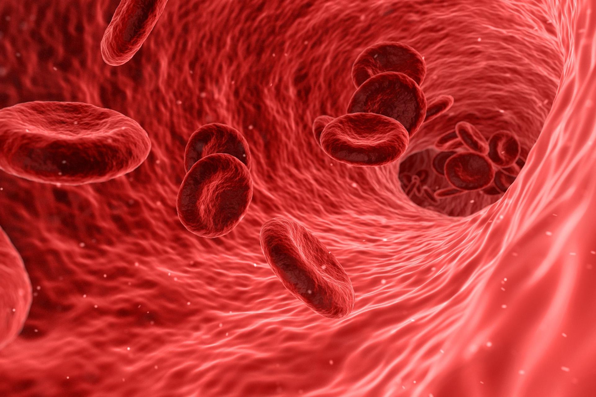 新型コロナウイルス治療薬開発